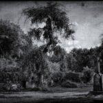 Gardens Of Elysia