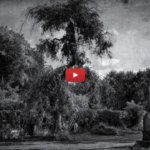 Rawkfist - Gardens Of Elysia